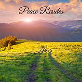 Peace Resides von Mother Nature FX