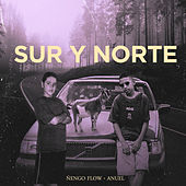 Sur y Norte by Ñengo Flow