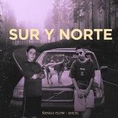 Sur y Norte de Ñengo Flow