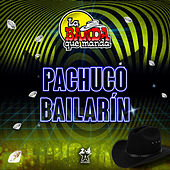 Pachuco Bailarín de La Banda Que Manda