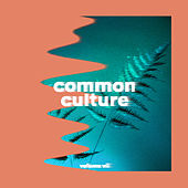 Common Culture, Vol. VII von Connor Franta
