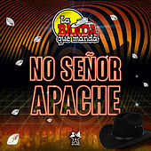 No Señor Apache de La Banda Que Manda