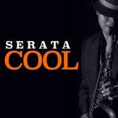 Serata Cool di Various Artists