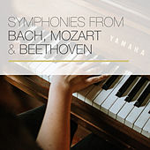 Symphonies from Bach, Mozart & Beethoven de Various Artists