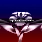 Jungle Music Selection 2020 de Fazzari