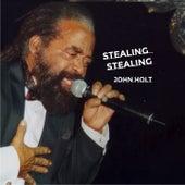 Stealing Stealing by John Holt