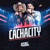 Cachacity (Ao Vivo) de Antony & Gabriel