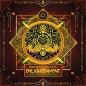 Enlightenment von Various Artists