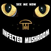 See Me Now de Infected Mushroom