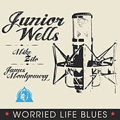 Worried Life Blues de Junior Wells