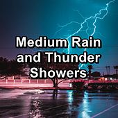 Medium Rain and Thunder Showers by Sounds Of Thunder