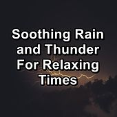 Soothing Rain and Thunder For Relaxing Times by Rain Sounds and White Noise