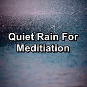 Quiet Rain For Meditiation by Relaxing Rain Sounds