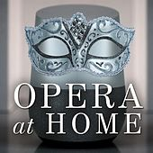 Opera at Home de Various Artists