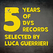 5 Years of DVS Records (Selected by Luca Guerrieri) by Various Artists