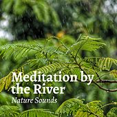 Meditation by the River by Rain Sounds (2)