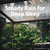 Steady Rain for Deep Sleep by Rain Sounds (2)