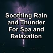 Soothing Rain and Thunder For Spa and Relaxation by Spa Music Relaxation