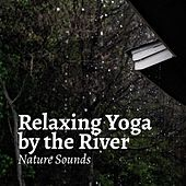 Relaxing Yoga by the River by Relaxing Rain Sounds