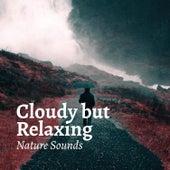 Cloudy but Relaxing by Relaxing Rain Sounds