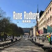 Stå med deg i stormen by Rune Rudberg