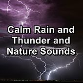 Calm Rain and Thunder and Nature Sounds by Spa Relax Music
