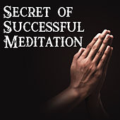 Secret of Successful Meditation - Thanks to This New Age Music You will Become a Professional in Achieving a State of Deep Diving in Your Mind von Ambient Music Therapy