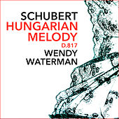 Hungarian Melody in B minor, D.817 de Wendy Waterman