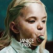 Waking by Janice Prix
