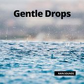 Gentle Drops by Rain Sounds (2)