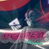 Perrea by Chakal