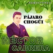 Pájaro Chogüi (Remastered) de Héctor Cabrera