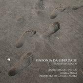 Sinfonia da Liberdade  (Sobreviveremos) by André M. Santos