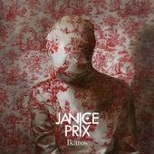 Ikaros by Janice Prix