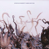 Obscurities by Stephin Merritt
