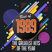 Best of 1989: The Greatest Hits of the Year de Various Artists