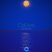 Coexist by Domino