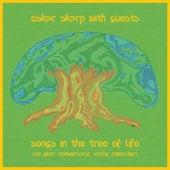 Songs In The Tree Of Life (10 Year Anniversary 432hz Remaster) de Oskar Skarp