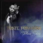 Triste Primavera by Plinio Soares
