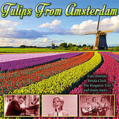 Tulips From Amsterdam de Various Artists