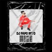 Sons de Uma Era by DJ Papo Reto