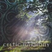 Celtic Harmony by Pete Huttlinger