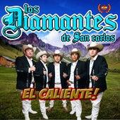 El Caliente! de Los Diamantes de San Carlos