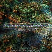 Secret Valley von Terramorph Records