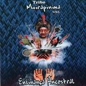 Ensinança Ancestral (2015) de A.F.C.R  Tribo Muirapinima