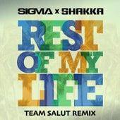 Rest Of My Life (Team Salut Remix) de Sigma