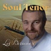 Les Berceaux (Le Long du Quai) by Soul Tenor