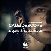 Enjoy the Silence by Caleidescope