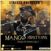 Remember Them days de Mango 95