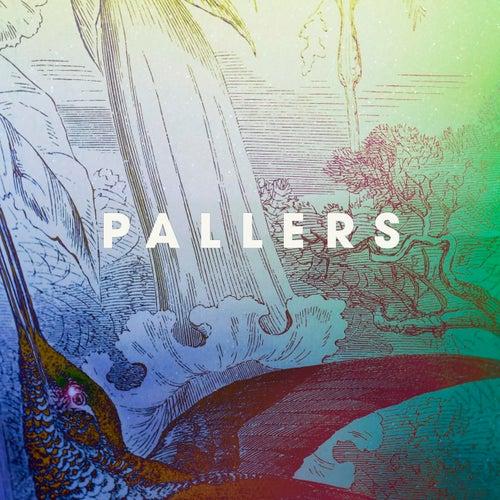 Come Rain, Come Sunshine by Pallers